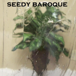 Seedy Baroque glass